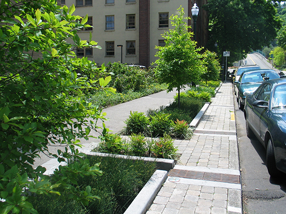 Green infrastructure can also work in urban settings. (http://water.epa.gov/infrastructure/greeninfrastructure/images/Green-Street-Planters.jpg)